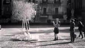 albero della pace-4