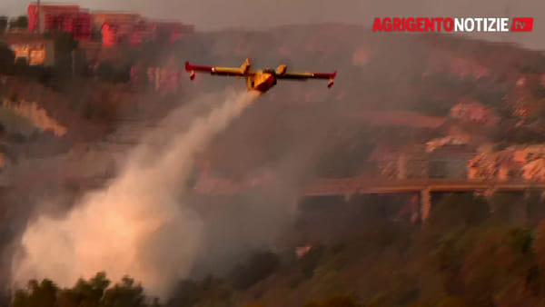 Elicottero e canadair in azione senza soste per salvare il bosco di Fondacazzo: ecco le immagini