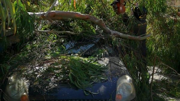 Paura a lido Cannatello: albero s'abbatte su due auto in sosta