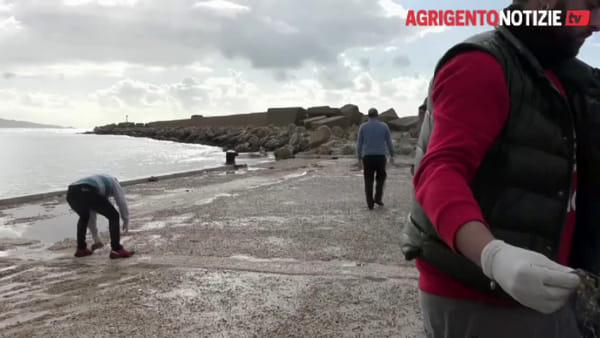 Rispetto dell'ambiente, il Wwf ripulisce il porticciolo turistico di San Leone
