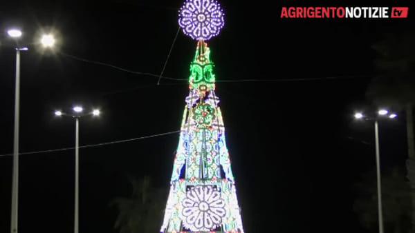 """La città si illumina, accesi due maestosi alberi di Natale: il """"regalo"""" di sir Rocco Forte"""