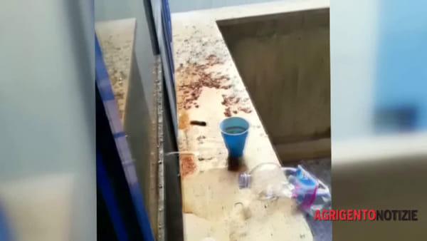 """Escrementi, bicchieri di plastica e cicche di sigarette: ecco le condizioni delle scale esterne del """"San Giovanni di Dio"""""""