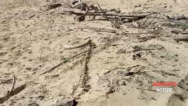 Ruspa spazza via le dune di Maddalusa? La Procura apre indagine conoscitiva