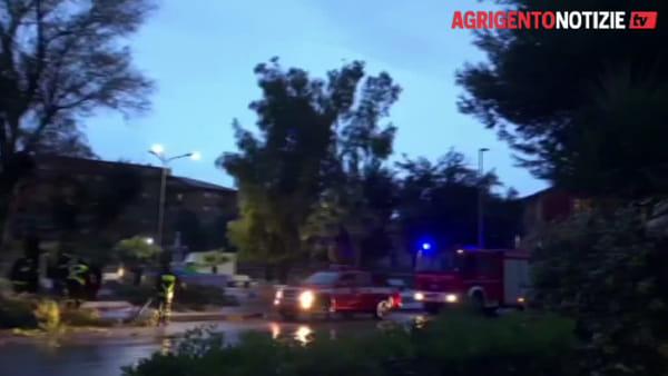 La conta dei danni: alberi caduti e cornicioni pericolanti,raffica di chiamate ai vigili del fuoco