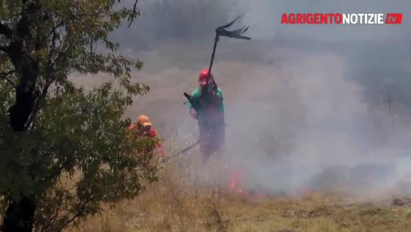 Fiamme alla Valle dei Templi, incendio domato dopo ore: in volo canadair ed elicottero