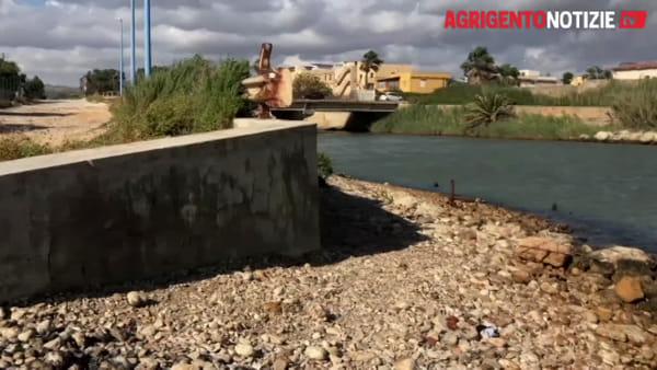 Carcassa di una tartaruga Caretta caretta nel fiume Akragas: ecco le immagini