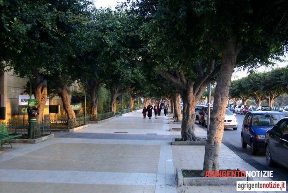 17518db5 Movida rumorosa al Viale, l'ira dei residenti e l'andirivieni della ...